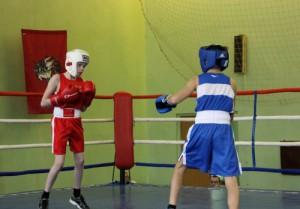 В соревнованиях по боксу приняли участие ученики средних образовательных учреждений, секций ЮАО и соседних округов