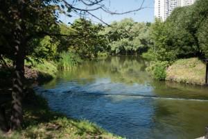 На фото природный комплекс возле реки Городни, который привели в порядок в прошлые выходные