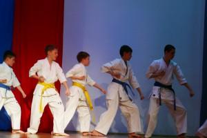 В состязаниях примут участие воспитанники секции боевых искусств, которая работает при ЦДС