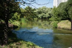 Перекусить или просто отдохнуть на свежем воздухе зябликовцы смогут в пойме реки Городни