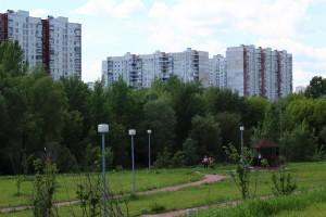 На фото зеленые насаждения в районе Зябликово