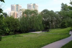 Любители здорового образа жизни в очередной раз соберутся в пойме реки Городни, чтобы потренировать тело и дух