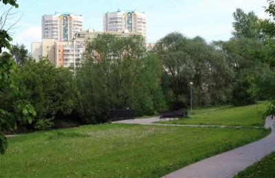 Любители здорового образа жизни из Зябликова в очередной раз соберутся в пойме реки Городни, чтобы потренировать тело и дух