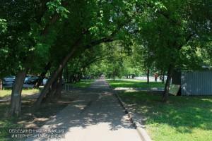Зеленые насаждения в районе Зябликово