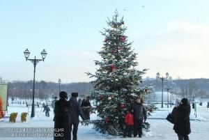 """Новогодняя елка в музее-усадьбе """"Царицыно"""""""