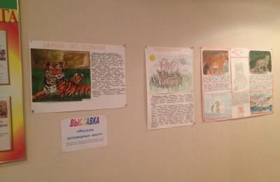 """Воспитанники ЦССВ """"Южный"""" ребята подготовили стенгазету о животных, занесённых в Красную книгу"""