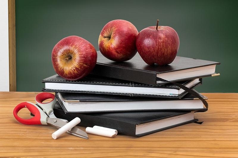 школа, учебники, яблоко Зябликово фото к новости на 20 марта 2103