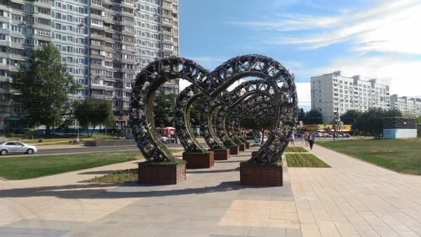 Арки-сердечки, ореховый бульвар, Красногвардейская, Соколова, 2606 (8)