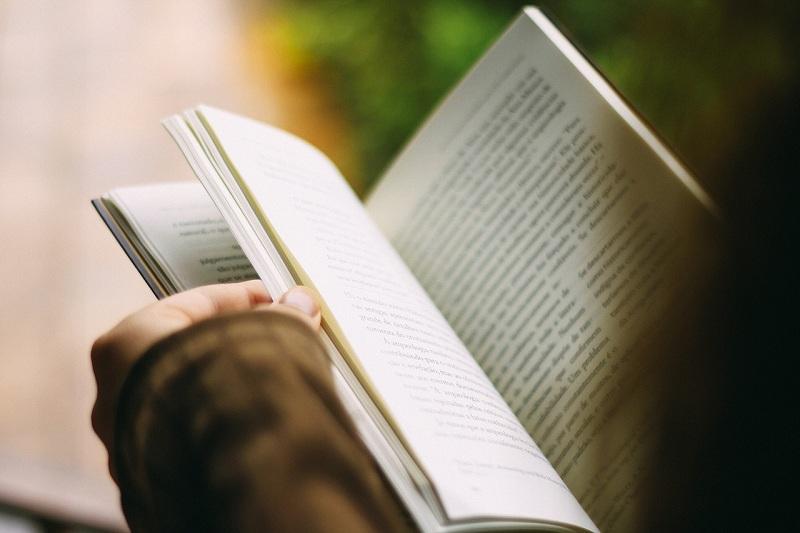 Книга, чтение, рука, пиксибей, 1306