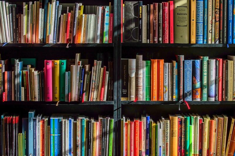 книги, библиотеки, пиксибей, 06062
