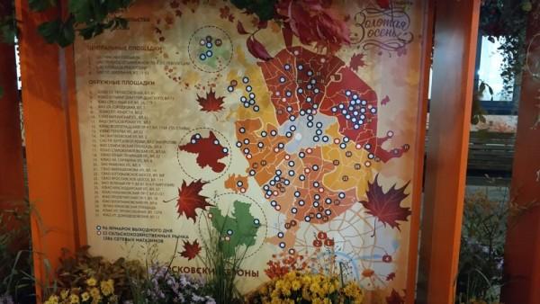 Золотая осень, Ореховый бульвар, фестиваль, Фролова, 0810 (11)