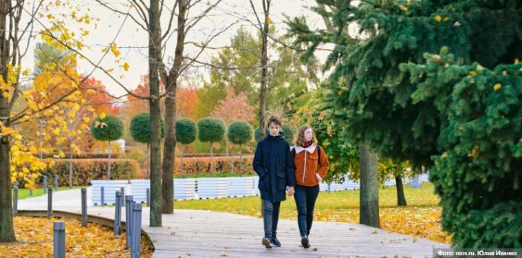 парк, осень, прогулка, мосру, 2310